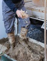 左官屋が藁を入れて土壁を捏ねているところ